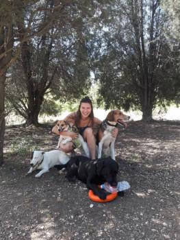 Домашняя передержка собак Зооняня - 20190523_111318.jpg