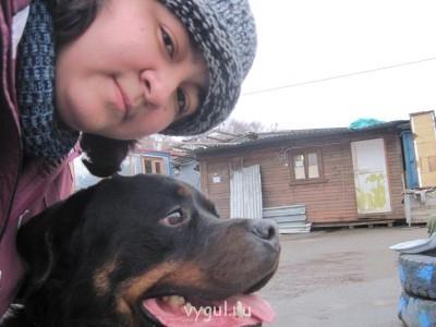 Выгул собак - Сильвер (25).jpg
