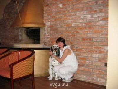 Домашняя передержка Вашего любимого питомца - СА и собака.jpg